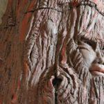 L'arbre d'argile