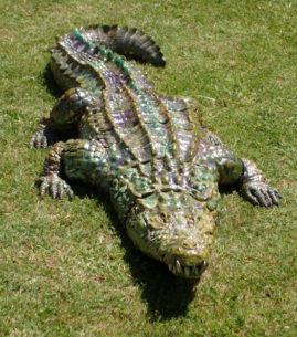 le crocodile sur l'herbe-Emmanuelle Not