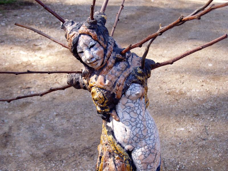 l'hêtre arbre d'argile-Emmanuelle Not