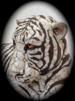 tigre blanc-Emmanuelle Not