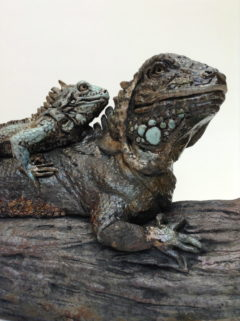 sculpture iguanes-Emmanuelle Not